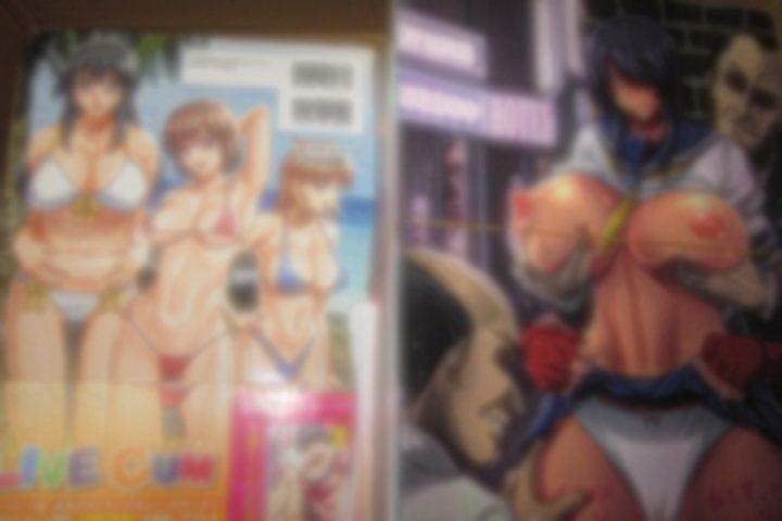 「埼玉」のお客様より、アダルトDVD・成人コミック・同人誌215点買取させて頂きました。