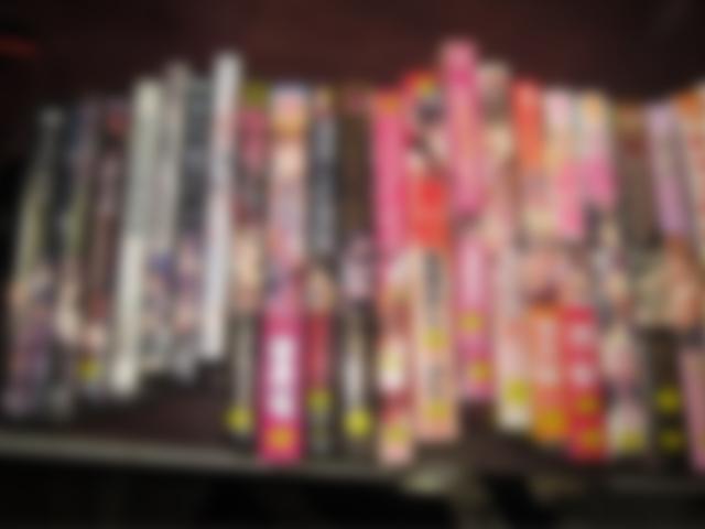 アダルトゲーム・成人コミック26点
